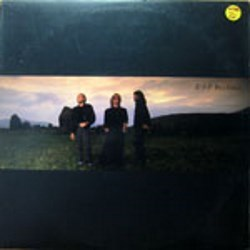 Bee Gees / ESP (LP)