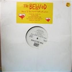 "Beloved, The / Rock to the Rhythm of Love (2x12 Promo) (12"")"