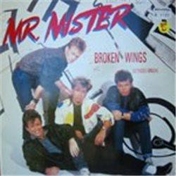 """Mr. Mister / Broken Wings (German Pressing) (12"""")"""