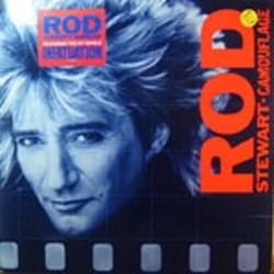 Stewart, Rod / Camouflage (LP)