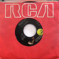 "Hornsby, Bruce and the Range / The Way It Is (7"")"